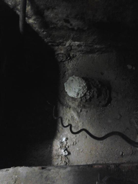 Black Cat Ghost Tour Salem Ma